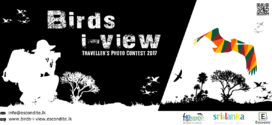 Birds-i-view Traveller's Photo Contest 2017